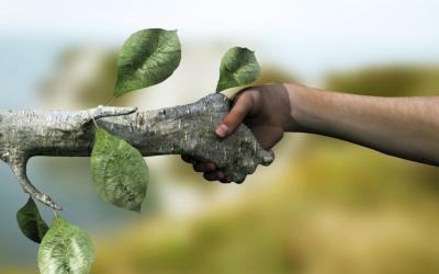 Top Nederlandse tuinbouwsector naar IKEA en Stockholm Resilience Center in Zweden